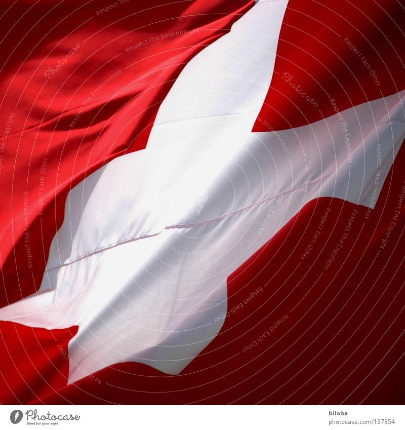 EM-Sieger 08! weiß rot Wind Erfolg Europa Alpen Symbole & Metaphern Fahne Schweiz Kreuz Sturm flattern Meister Schweizer Ballsport