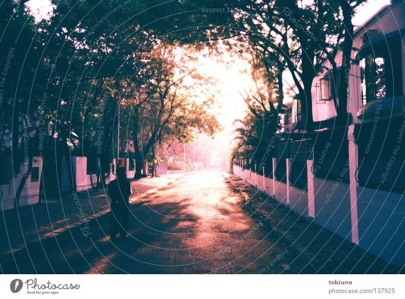 poona morning 1|3 (2007) Morgen Sonnenaufgang Sonnenuntergang Straße Wahrheit Indien pune sunrise street