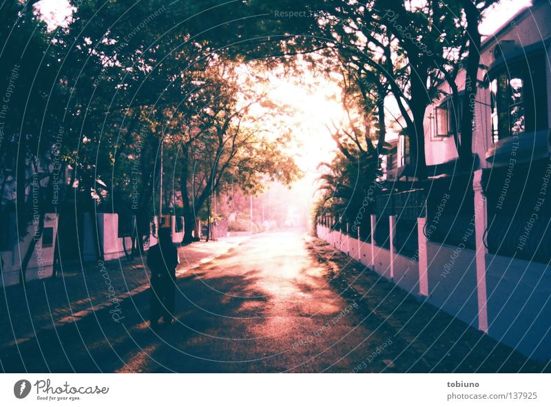 poona morning 1|3 (2007) Sonne Straße Indien Wahrheit