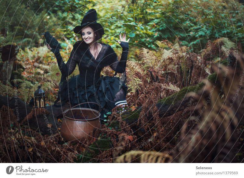 und übermorgen.... Mensch Frau Natur Wald Erwachsene Umwelt Herbst feminin Sträucher kochen & garen Karneval Hut gruselig Vorfreude Halloween Topf