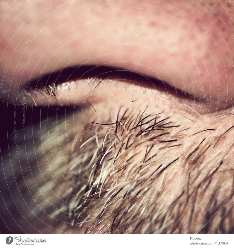 Parts VIII - End Nasenhaar Geruch Nasenloch Nasenspitze Nasenmuscheln Schleimhaut Luft Atem atmen Bart Oberlippenbart Barthaare rau Organ Unschärfe weich hart