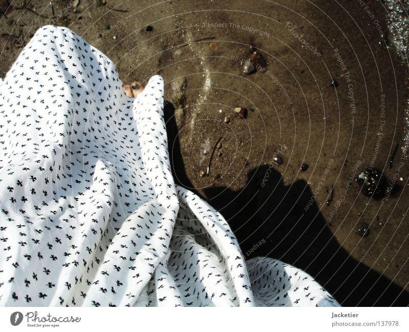 Wind am Meer Frau Wasser weiß Bewegung Fuß Muschel Zehen Algen Wismar