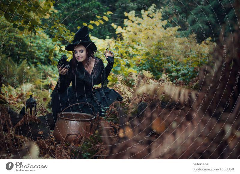 Hexenbräu Karneval Halloween Mensch feminin Frau Erwachsene 1 Natur Herbst Farn Wald gruselig Karnevalskostüm Hexenfeuer Kessel Rabenvögel brauen Farbfoto