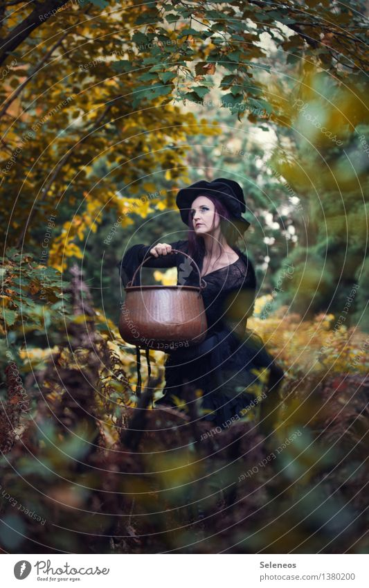 I wonder what she will brew Karneval Halloween Mensch feminin Frau Erwachsene 1 Umwelt Natur Herbst Sträucher Wald Hut Kessel Hexenkessel gruselig