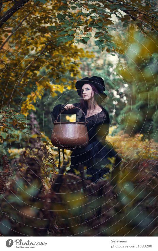 I wonder what she will brew Mensch Frau Natur Wald Erwachsene Umwelt Herbst feminin Sträucher Kochen & Garen & Backen Hut Karneval gruselig Sammlung