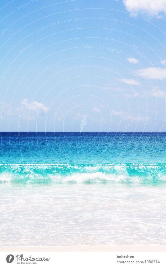 urlaub in sicht!!! Himmel Natur Ferien & Urlaub & Reisen blau schön Sommer Wasser Meer Landschaft Wolken Ferne Strand Küste außergewöhnlich Freiheit