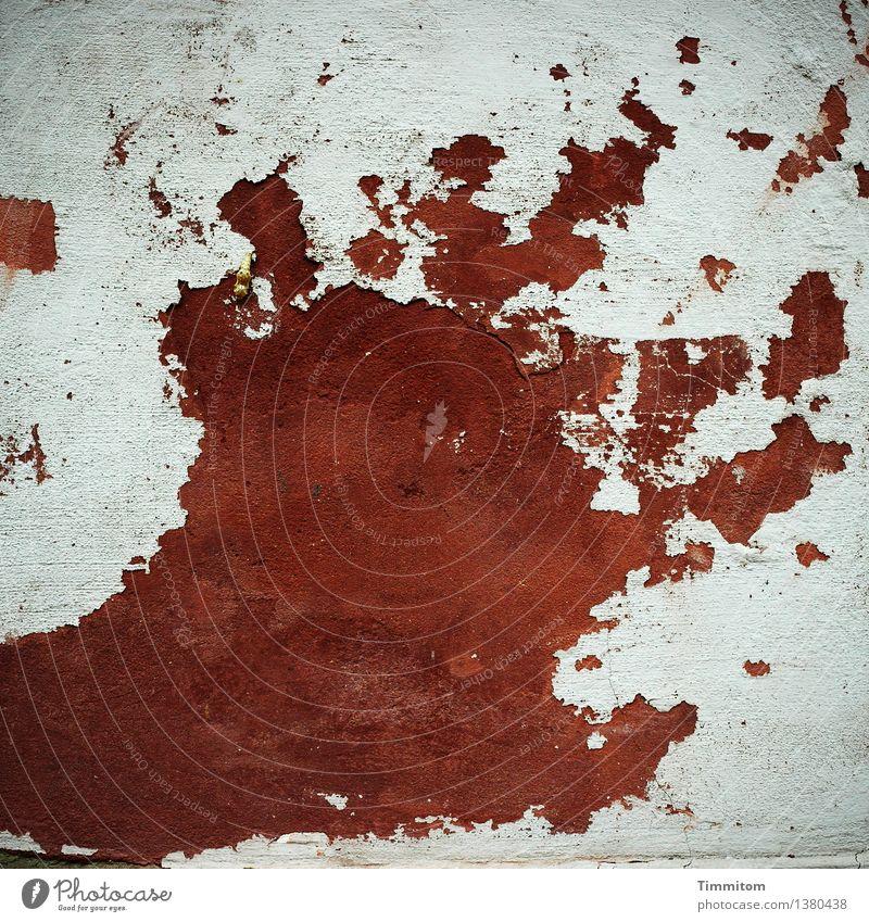 Scream! Kunstwerk Haus Mauer Wand Zeichen schreien fantastisch braun grau rot Gefühle Wut Hass Angst Farbfoto Außenaufnahme Menschenleer Tag