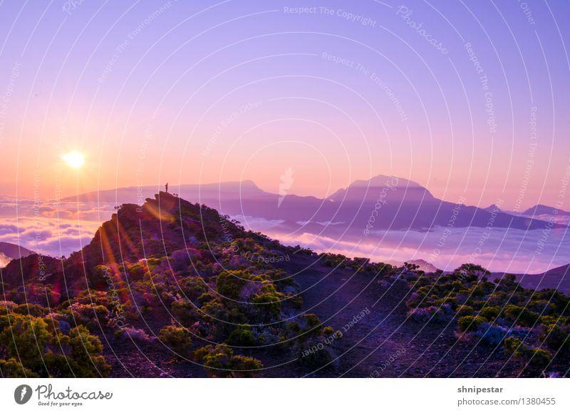 Another sunset at Piton de La Fournaise Mensch Natur Ferien & Urlaub & Reisen Sommer Erholung Meer Landschaft Ferne Berge u. Gebirge Umwelt Sport