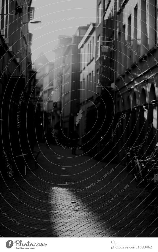 antwerpen Antwerpen Stadt Haus Verkehrswege Straße Wege & Pfade Fahrrad Schwarzweißfoto Außenaufnahme Tag Licht Schatten Sonnenlicht