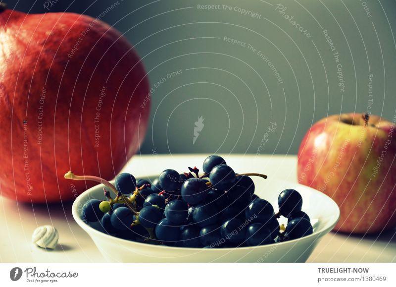 Extraportion für Matlen - - - Lebensmittel Frucht Apfel Dessert LavalléeTrauben (blau) Hokkaido Kürbis Ernährung Bioprodukte Vegetarische Ernährung Diät Fasten