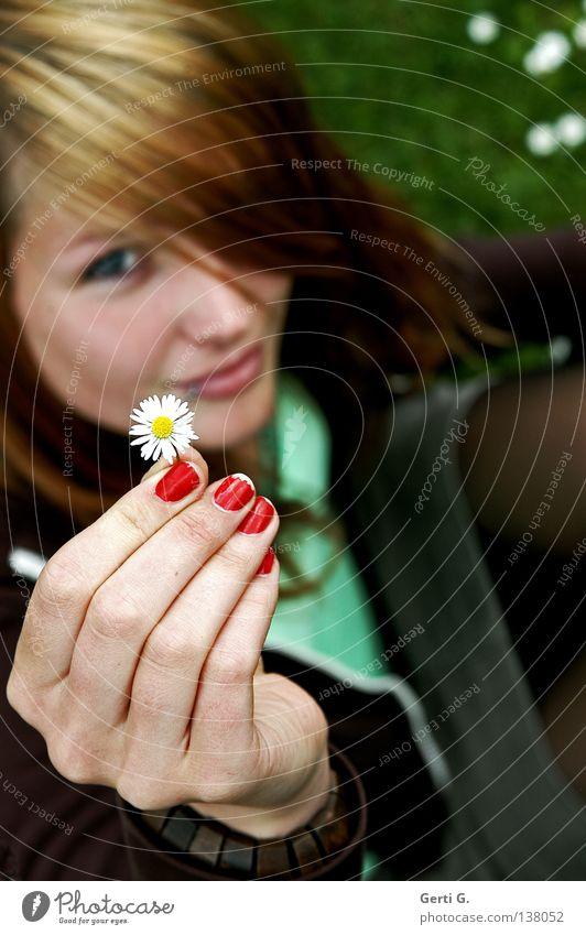 giveaway Gänseblümchen Finger Hand gepflegt Nagellack rot grün braun lackiert Fingernagel Frau Junge Frau schön sympathisch Freundlichkeit Wiese Gras
