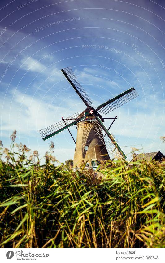 Windkraft Ferien & Urlaub & Reisen Tourismus Ausflug Umwelt Natur Himmel Wolken Klima Klimawandel Pflanze Gras Sträucher Niederlande Kinderdijk Bauwerk Gebäude