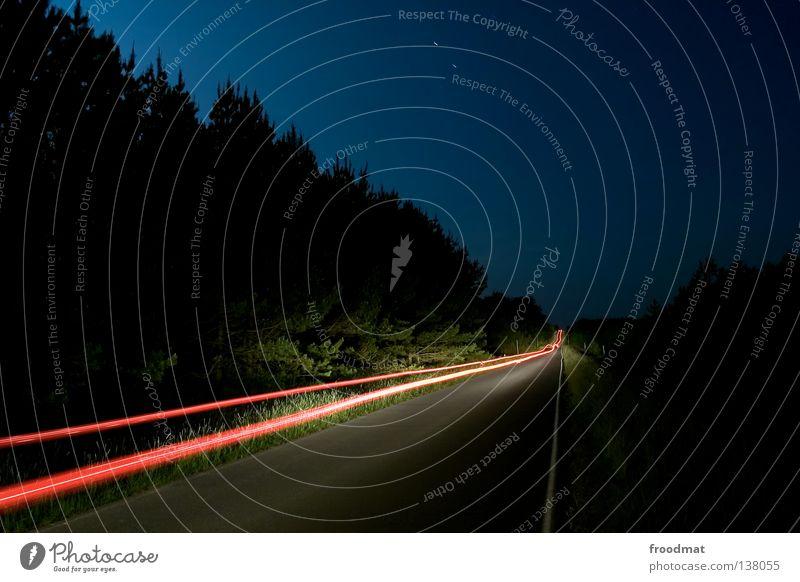 lost highway blau Wald Straße Tod kalt Wege & Pfade hell Beleuchtung Nebel Beton Verkehr planen Elektrizität Zukunft Coolness Macht