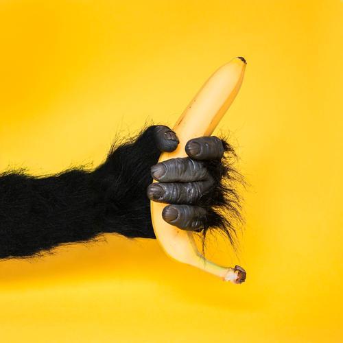 Eine Banane für Ezra Hand schwarz gelb lustig Stil Lifestyle Kunst Lebensmittel Design Frucht Kommunizieren Geschenk Idee festhalten Kontakt Karneval