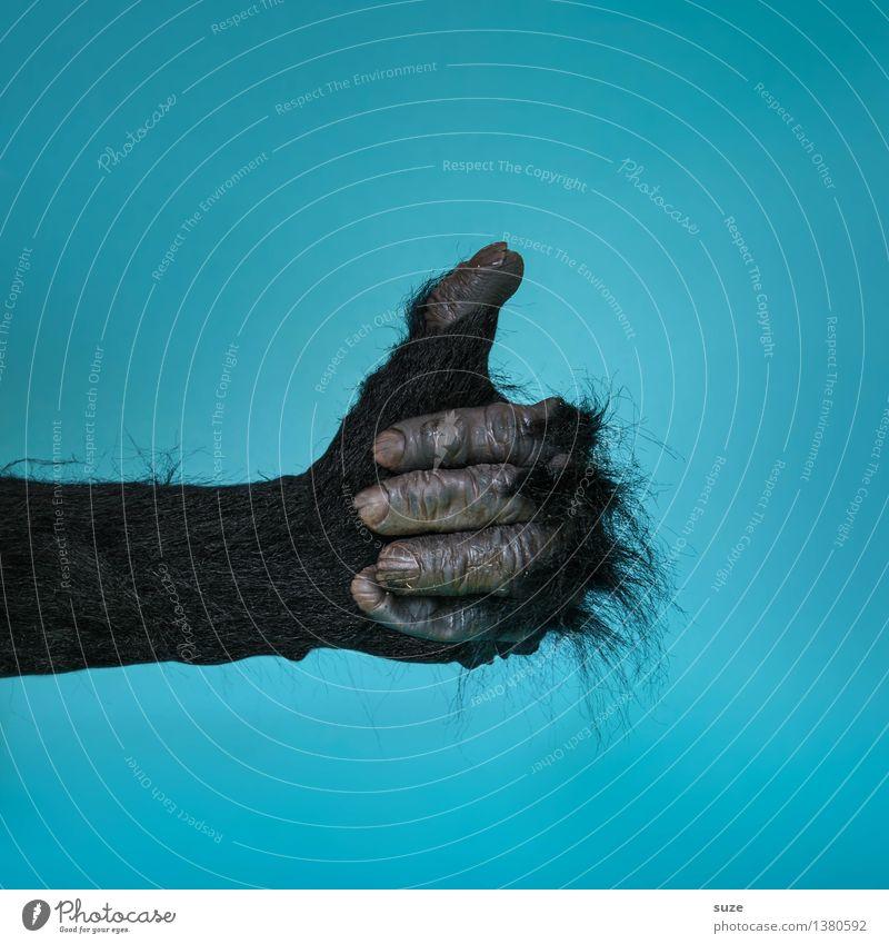 Affengeil Hand Tier Freude lustig Business wild Behaarung Erfolg verrückt Arme Finger Zeichen Coolness Fell Karneval tierisch