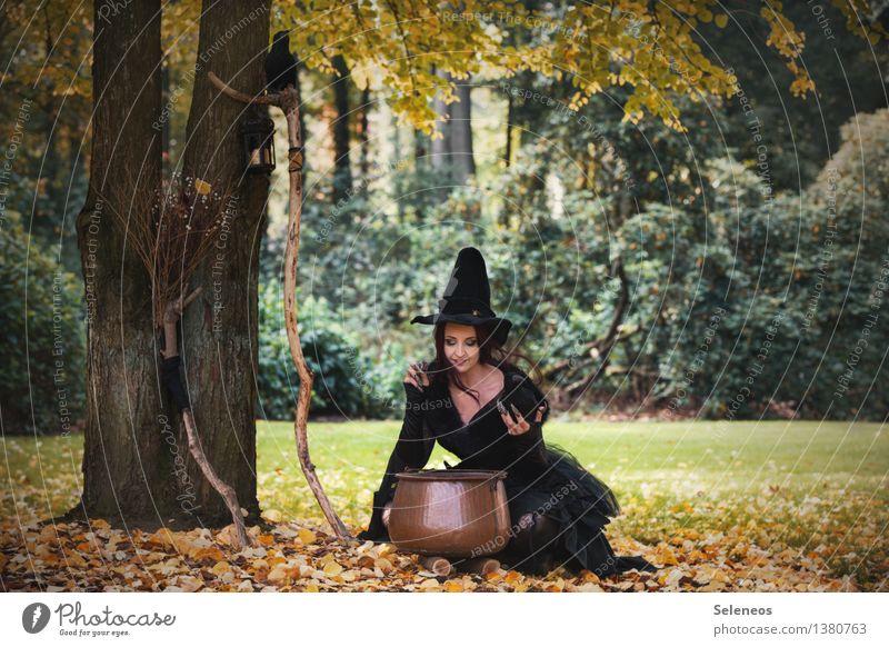 alles bio! Karneval Halloween Mensch feminin Frau Erwachsene 1 Umwelt Natur Herbst Schönes Wetter Baum Gras Herbstlaub Blatt Wiese Wald Waldlichtung Hut Kessel