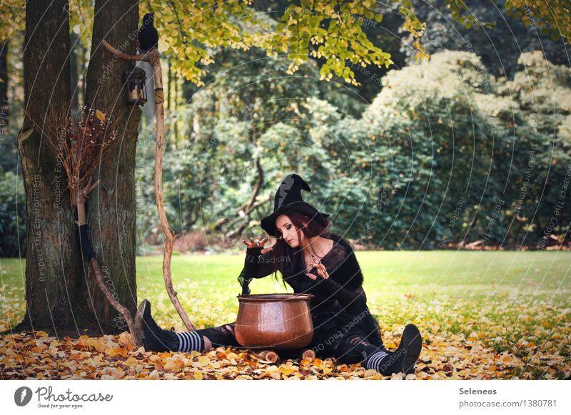 Hexengebräu Frau Mensch Natur Baum Blatt Erwachsene Umwelt Herbst feminin Garten Park Karneval Hut gruselig Karnevalskostüm Halloween