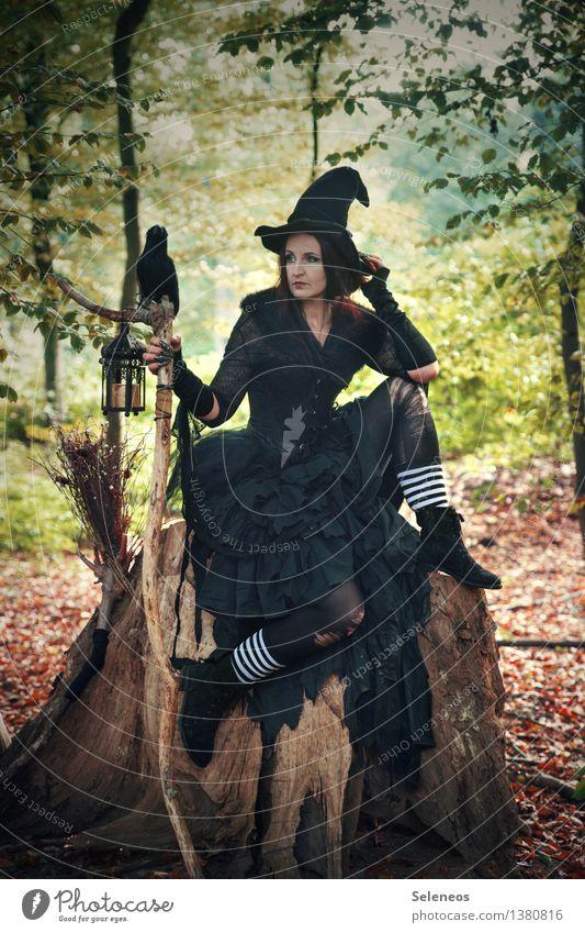 Halloweenzeit Feste & Feiern Mensch feminin Frau Erwachsene 1 Subkultur Rockabilly Veranstaltung Herbst Baum Wald Hut Rabenvögel gruselig verkleiden Hexe