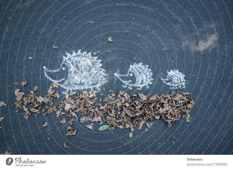 Herbstspaziergang wandern Umwelt Natur Blatt Straße Wege & Pfade Tier Wildtier Igel Tierfamilie Kreide Zeichen Fröhlichkeit Spaziergang Farbfoto Außenaufnahme