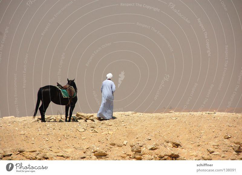 Getrennte Wege Ödland Trennung Einsamkeit Beduinen Pferd Ägypten Afrika Wüste Sand sich trennen alleine lassen Weg ins Ungewisse Zurückbleiben Wüstenmensch