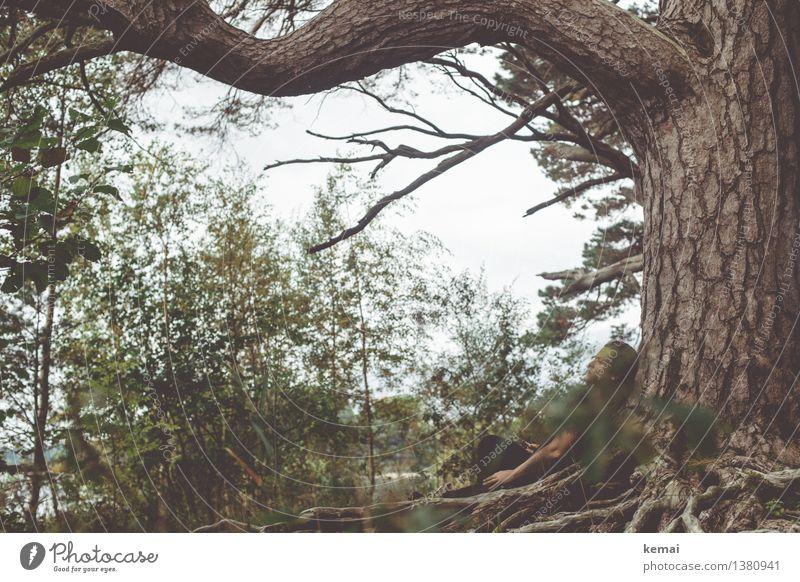 Nothing clings like the past Mensch Frau Natur alt Pflanze Baum Hand Landschaft Einsamkeit Blatt ruhig dunkel Wald Erwachsene Umwelt Leben