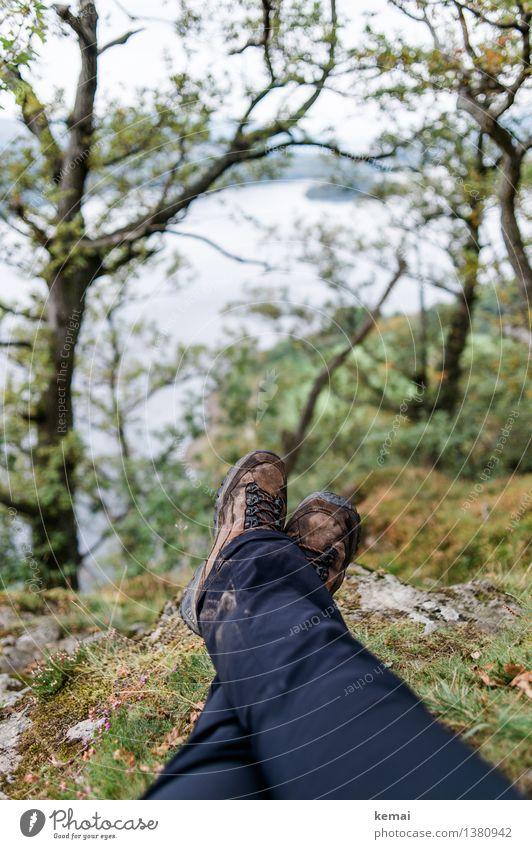 Wanderbeine Mensch Natur Ferien & Urlaub & Reisen Pflanze Baum Erholung Landschaft ruhig Ferne Erwachsene Umwelt Leben Gras Beine Freiheit Fuß