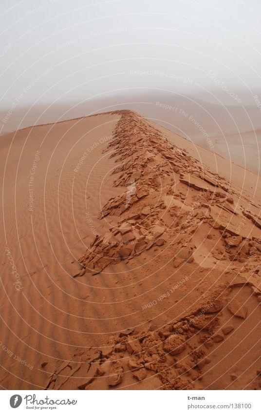 wet desert ruhig Einsamkeit Sand Nebel Erde Afrika Wüste Fußspur Namibia