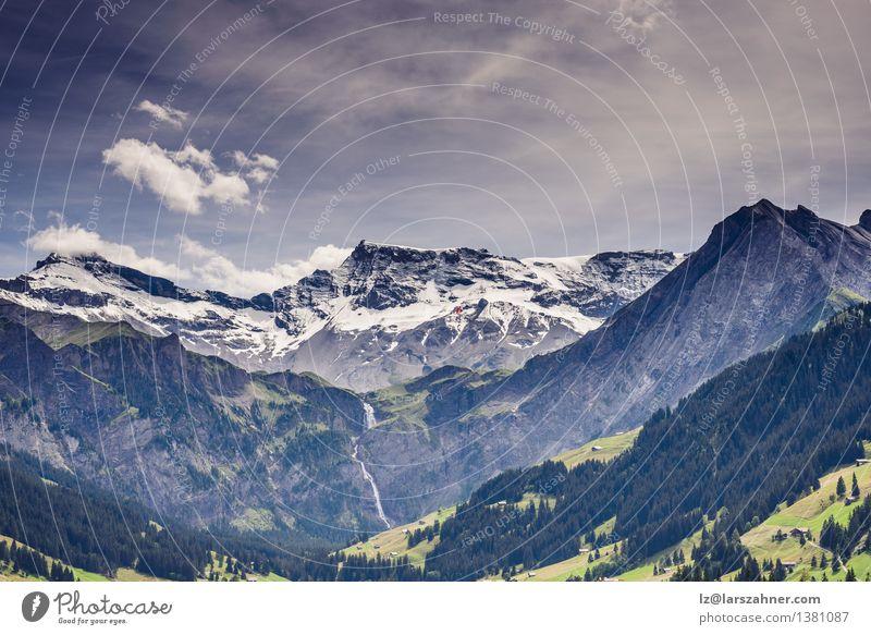 Szenische Berglandschaft mit schneebedeckten Gipfeln Himmel Natur Ferien & Urlaub & Reisen Pflanze Sommer Baum Landschaft Wolken Wald Berge u. Gebirge Freiheit