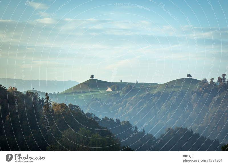 i-Tüpfelchen Umwelt Natur Landschaft Himmel Sommer Schönes Wetter Baum Wiese Wald Hügel natürlich grün Schweiz Farbfoto Außenaufnahme Menschenleer Tag