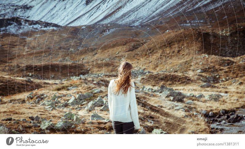 Wind feminin Junge Frau Jugendliche 18-30 Jahre Erwachsene Umwelt Natur Landschaft Herbst Berge u. Gebirge Gipfel außergewöhnlich natürlich Farbfoto