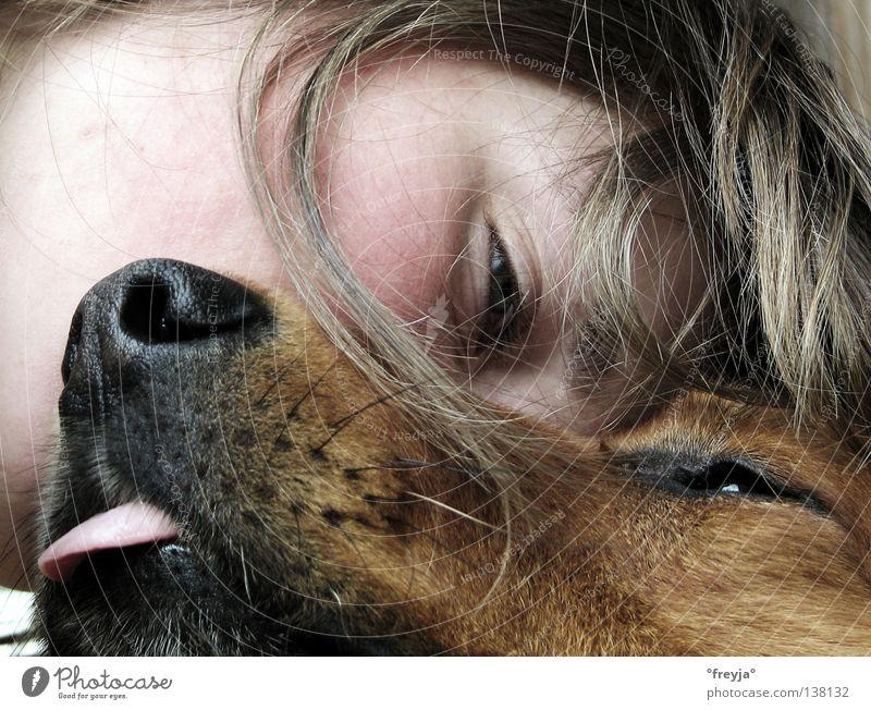 mein hund und ich Freude Haare & Frisuren Hund Zufriedenheit Kuscheln