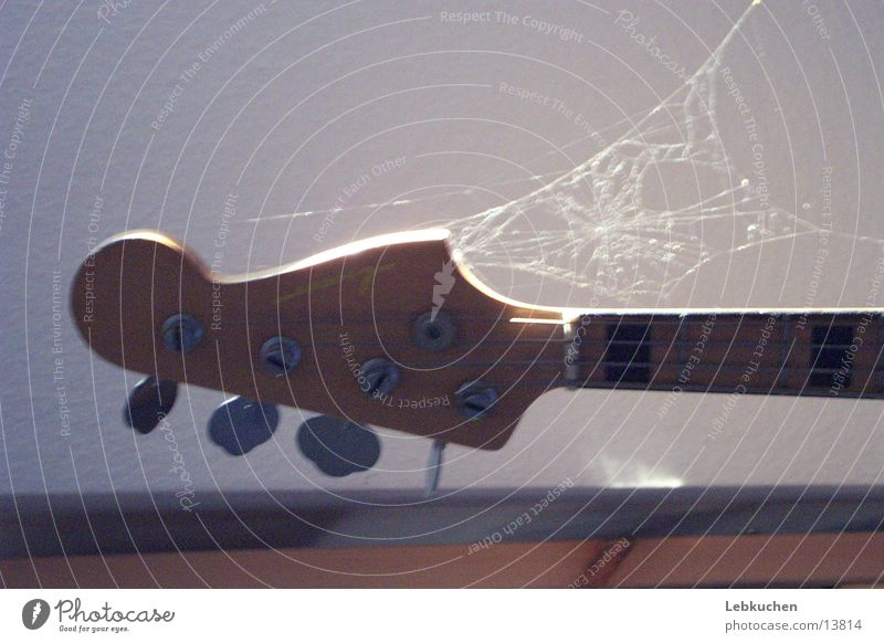 Gitarre am Netz Spinnennetz Freizeit & Hobby Musik Musikinstrument