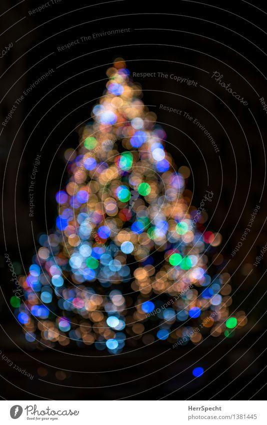 Lichterscheinung Weihnachten & Advent Winter Baum glänzend schön mehrfarbig Güte Hoffnung Glaube Christentum Ritual Weihnachtsbaum Weihnachtsdekoration