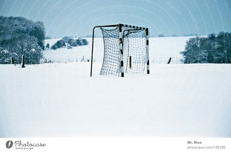 Tor!Tor!Tor! blau weiß Baum Winter Einsamkeit ruhig kalt Schnee Sport Eis Fußball Platz leer Frost Sträucher Coolness