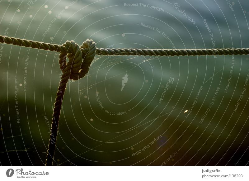 Hafen Wasserfahrzeug Ankerplatz Befestigung hängen Gegenlicht Abendsonne durcheinander verwickelt Farbe Handwerk Seil Knoten