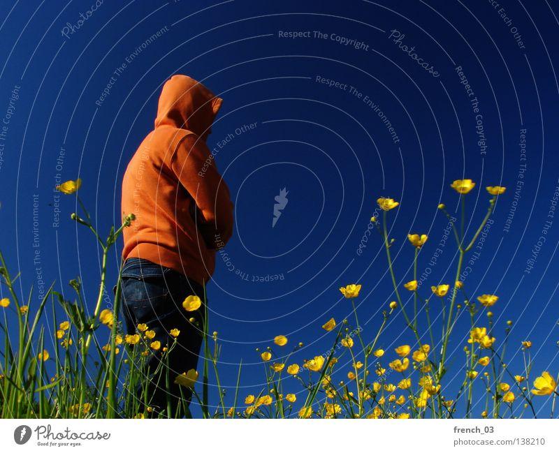 müssen Himmel Mann Natur Jugendliche blau grün schön Pflanze Sommer Blume Farbe Einsamkeit ruhig Erholung Landschaft gelb