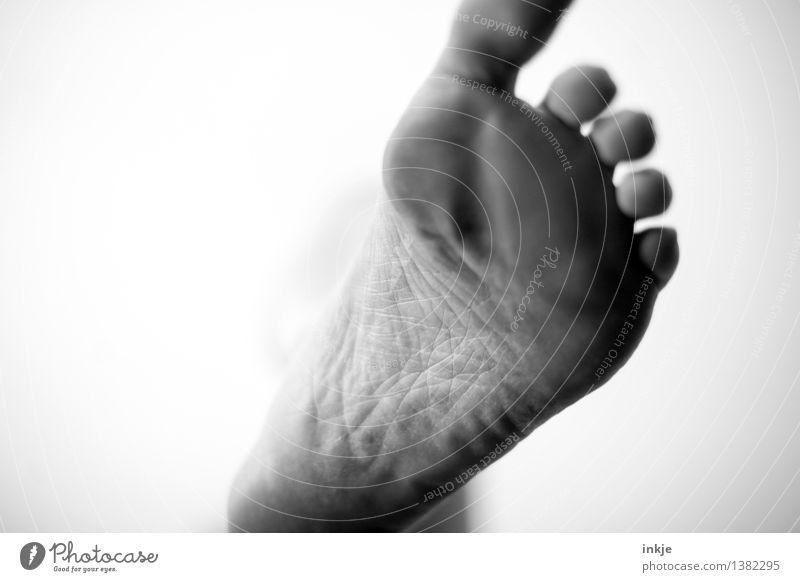 45 Leben Fuß Fußsohle 1 Mensch gehen stehen außergewöhnlich dreckig nah oben unten Vor hellem Hintergrund Hautfalten Hornschicht groß unterdrückend abwärts