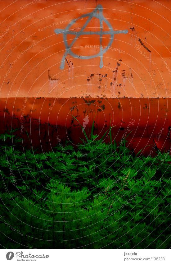 AO NO grün rot Graffiti Gras Angst Kreis USA Vergänglichkeit Gewalt Gesellschaft (Soziologie) Stress gegen England Punk Panik Politik & Staat
