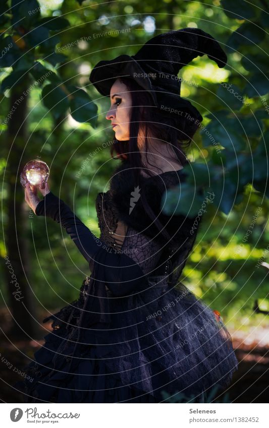 Zukunftsperspektiven Karneval Halloween Mensch feminin Frau Erwachsene Gesicht 1 Umwelt Natur Wald Bekleidung Kleid Hut gruselig Hexe Karnevalskostüm Farbfoto