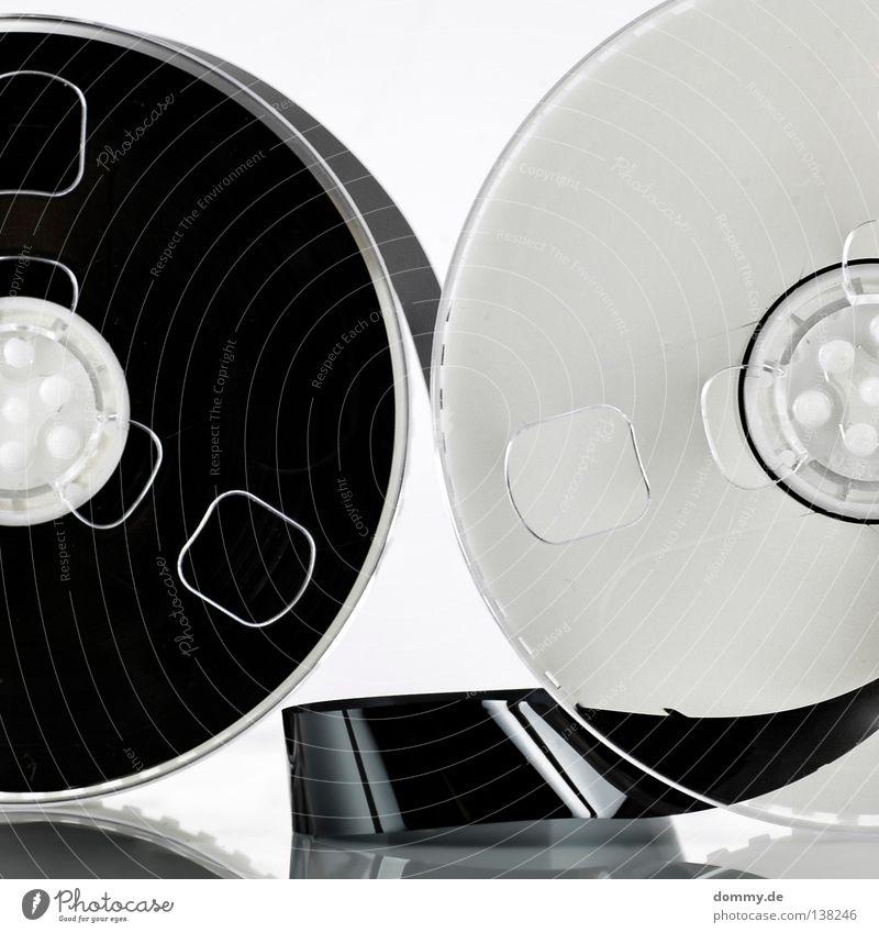 technik dino weiß schwarz Spielen Technik & Technologie Filmindustrie rund weich Fernsehen Klarheit Streifen Schnur Statue Kunststoff Vergangenheit Ton