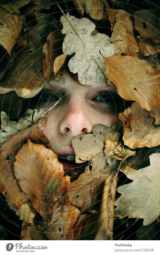 Ein letzter Blick Frau Mädchen Gesicht ruhig Blatt Auge Einsamkeit Ferne kalt Tod Mund braun Kind Nase Trauer gefährlich