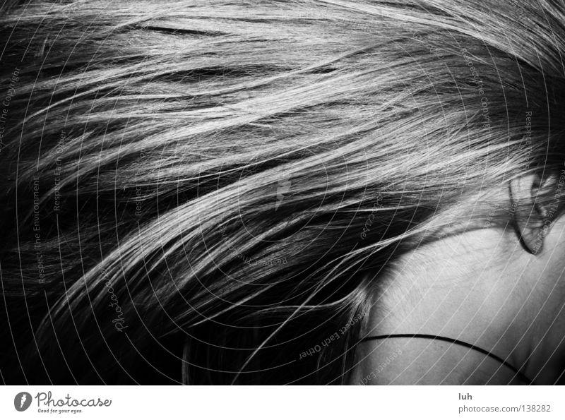 in Eile Haare & Frisuren Wind langhaarig Stimmung Verlässlichkeit Pünktlichkeit Stress Zeit wehen Haarsträhne laufen rennen zeitlos Nacken verschwimmen Kopf