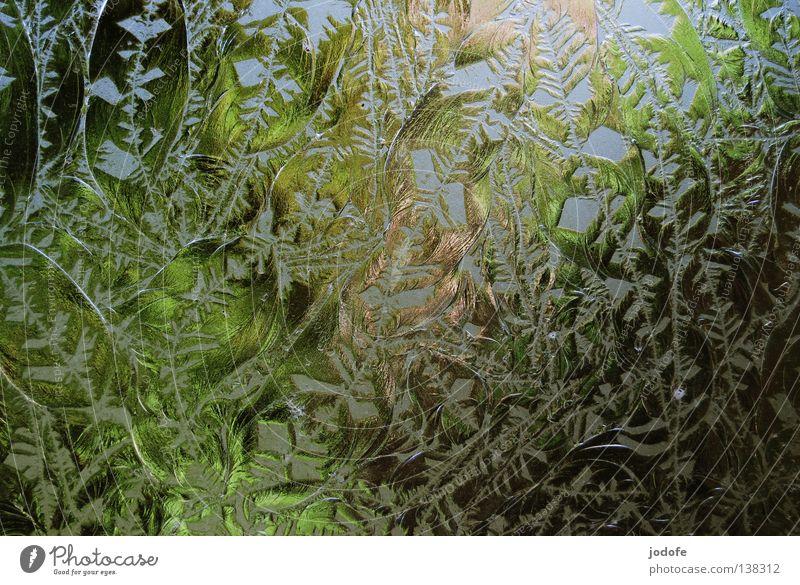 Fensterscheibe beschriften durchsichtig Sichtschutz Bad Park grün Baum Blume Schnörkel verziert Farbverlauf Unschärfe gebrochen brechen Milchglas Kurort