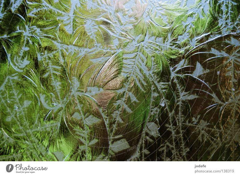 Fensterscheibe II beschriften durchsichtig Sichtschutz Bad Park grün Baum Blume Schnörkel verziert Farbverlauf Unschärfe gebrochen brechen Licht Milchglas