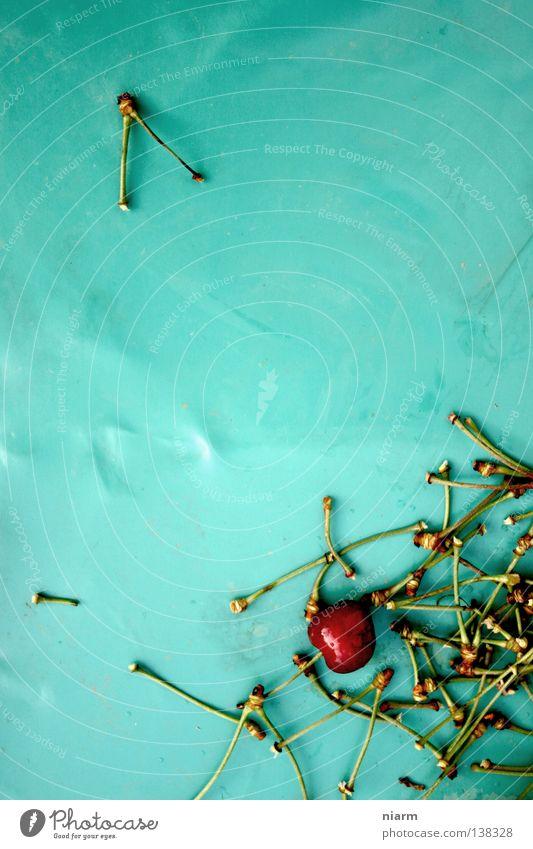 Kirschreste Kirsche rot Stil aufgegessen grün Rest Müll Stillleben Tisch lecker Skelett Baum graphisch Ernährung Sommer Frucht türkies Appetit & Hunger plasik