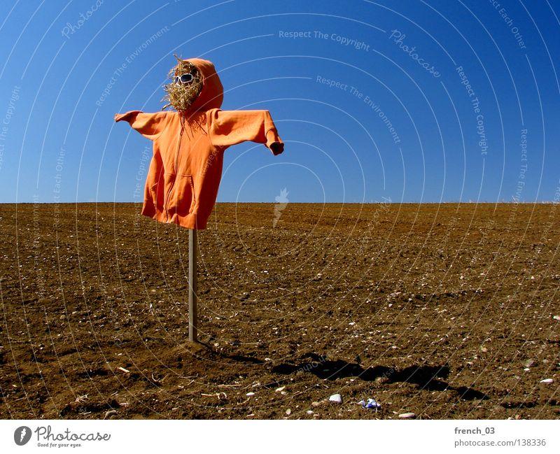 Holländer am Spieß Vogelscheuche hässlich Kapuze Feld Pullover Stroh Sonnenbrille Wolken Himmel Brille Holz Geister u. Gespenster gruselig Einsamkeit