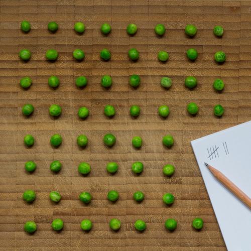 Erbsenzähler - aufgereihte Erbsen auf Holzuntergrund mit Schreibblock und Bleistift Lebensmittel Gemüse Ernährung Vegetarische Ernährung Diät Gesundheit