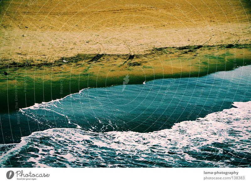 Kampf der Elemente Manhattan Amerika Strand Stein Ferien & Urlaub & Reisen Palme Meer Sandstrand Wellen Ebbe Gezeiten Leidenschaft unruhig Schaum Wind leer