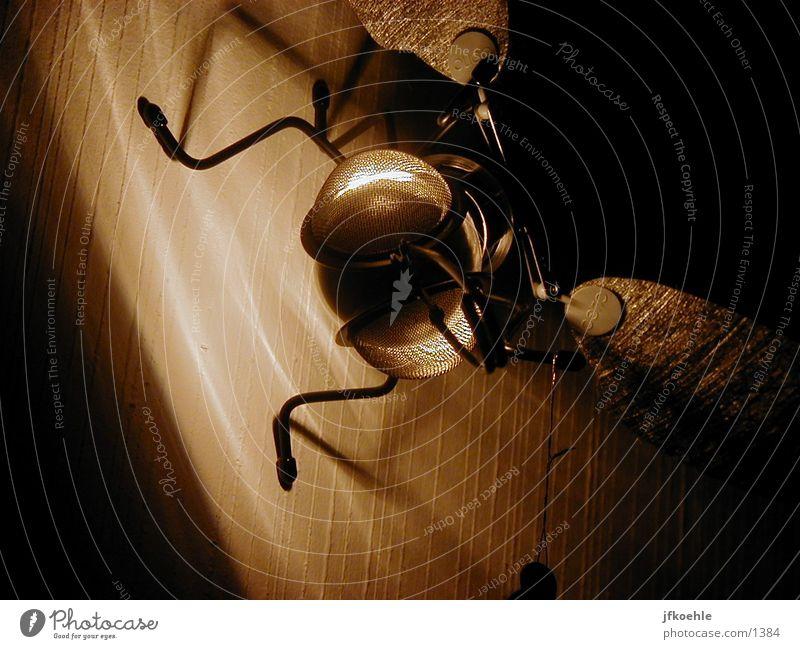 Fliege Tier Lampe Technik & Technologie Dinge