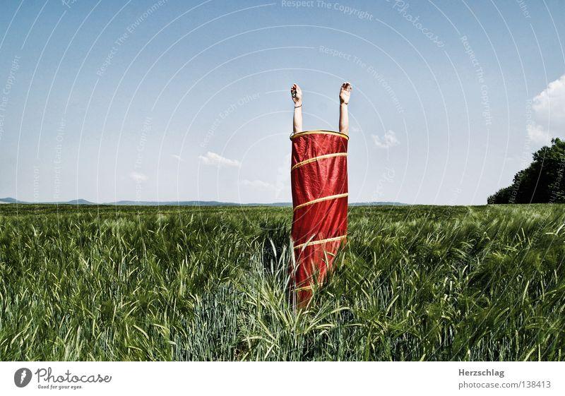 Sie lebt - die litfaßsäule Hand grün Baum rot Sommer ruhig Einsamkeit Ferne 2 lustig Feld Arme hoch 3 stehen rund